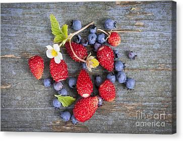 Berries On Rustic Wood  Canvas Print by Elena Elisseeva