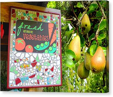 Best Farmstand Canvas Print by Lyn  Perry