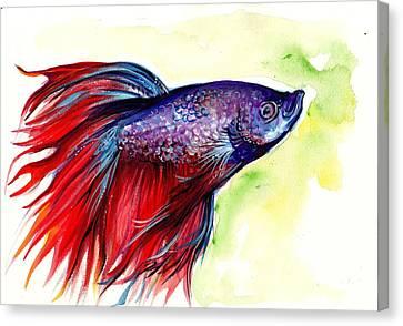 Betta Canvas Print - Beta Splendens Watercolor Fish by Tiberiu Soos