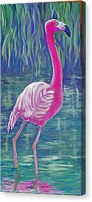 Beta's Flamingo Canvas Print by Harriett Masterson