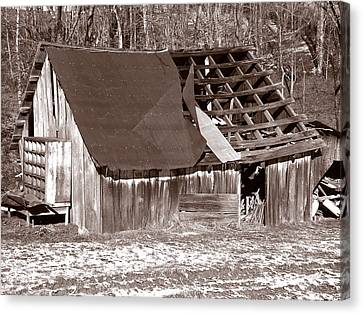 Canvas Print featuring the photograph Better Days by Craig T Burgwardt