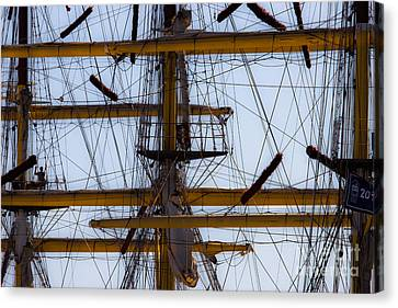 Between Masts And Ropes Canvas Print by Edgar Laureano