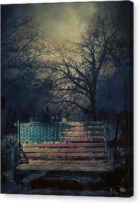 Between Night And Dawn Canvas Print by Douglas MooreZart