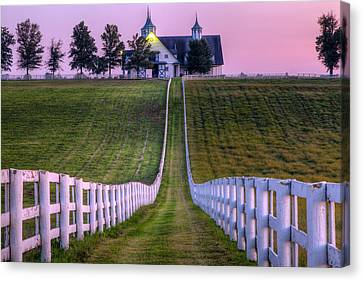 Between The Fences Canvas Print by Alexey Stiop