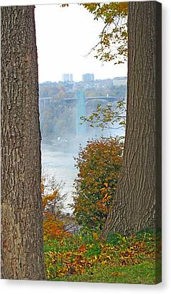 Between The Trees Canvas Print by Barbara McDevitt