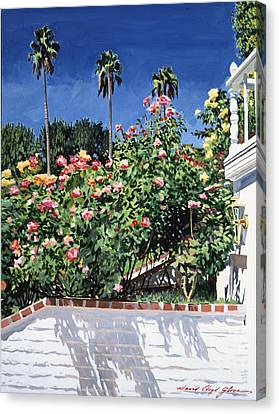 Beverly Hills Roses Canvas Print by David Lloyd Glover