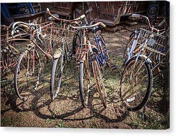 Bevy Of Bicycles Canvas Print by Debra and Dave Vanderlaan