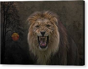 Beware Of The Cat Canvas Print by Joachim G Pinkawa