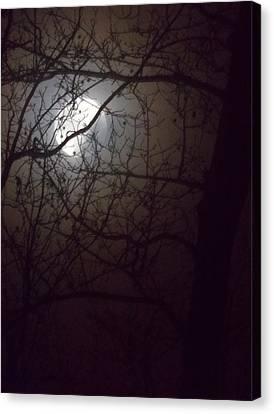 Beware The Rougarou Moon Canvas Print by John Glass