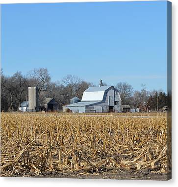 Beyond The Cornfield Canvas Print