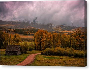 Canvas Print featuring the photograph Beyond The Road by Ken Smith