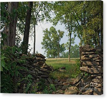 Beyond The Rock Fence Canvas Print by Roger Potts