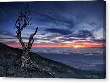 Desolation Canvas Print - Beyond The Sky by Andrea Auf Dem