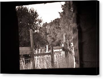 Beyond The Stable Canvas Print by Loriental Photography