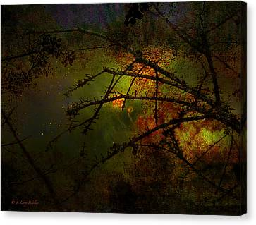 Beyond The Thorns Canvas Print by J Larry Walker