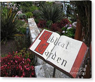 Canvas Print featuring the photograph Biblical Garden by James B Toy