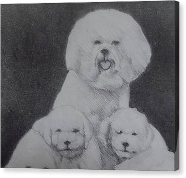 Bichon Family Canvas Print by Myke  Irving