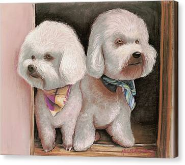 Canvas Print featuring the painting Bichon Frise by Melinda Saminski