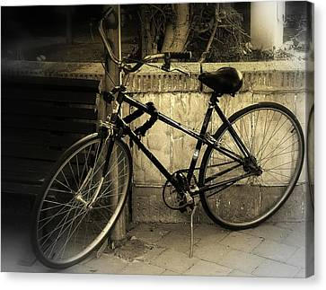 Bicycle Canvas Print by Amr Miqdadi