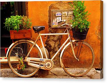 Bicycle In Rome Canvas Print by Caroline Stella
