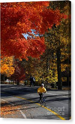 Bicyclist In Park During Autumn Canvas Print