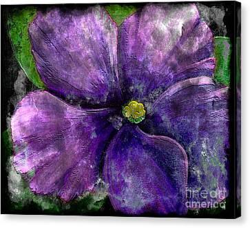 Big African Violet - Purple Flower - Steel Engraving Canvas Print by Barbara Griffin