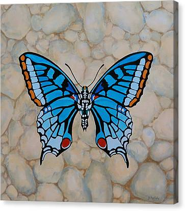 Big Blue Butterfly Canvas Print by Jo Appleby