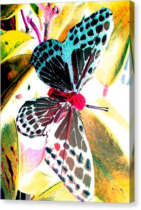 Canvas Print featuring the digital art Big Butterfly by Nico Bielow