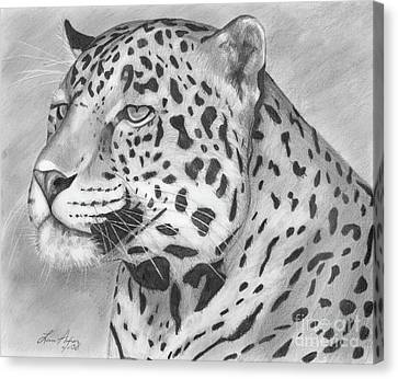 Big Cat Canvas Print by Lena Auxier