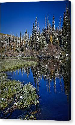 Big Cottonwood Canyon  Canvas Print by Richard Cheski