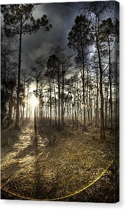 Big Cypress Fire At Sunset Canvas Print by Bradley R Youngberg