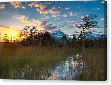 Getty Canvas Print - Big Cypress Sunrise by Rich Leighton