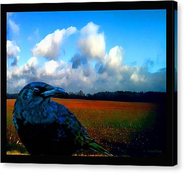 Big Daddy Crow Series Silent Watcher Canvas Print by Lesa Fine