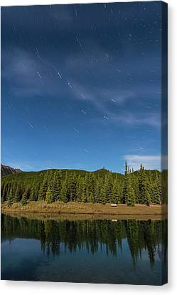 Big Dipper Star Trails Over Forgetmenot Canvas Print by Alan Dyer