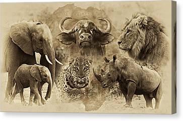Big Five - Untamed Africa Canvas Print by Basie Van Zyl