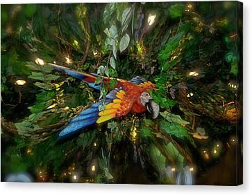 Big Glider Macaw Digital Art Canvas Print