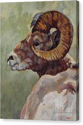 Big Horn In Sage Canvas Print
