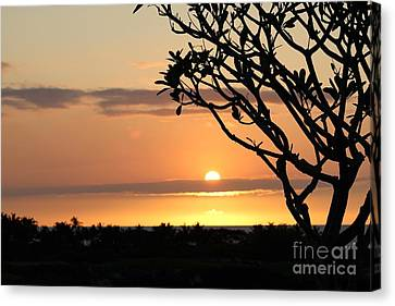 Big Island Sunset All Profits Go To Hospice Of The Calumet Area Canvas Print