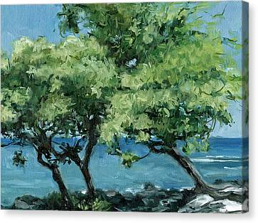 Big Island Trees Canvas Print by Stacy Vosberg