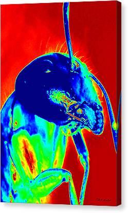 Big Kahuna Canvas Print - Big Kahuna Of The Neon City Ant World by Nola Hintzel