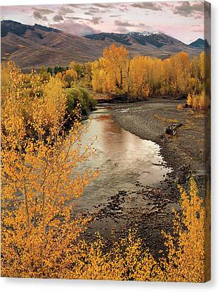 Big Lost River In Autumn Canvas Print by Leland D Howard