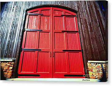 Big Red Doors Canvas Print by Cheryl Young