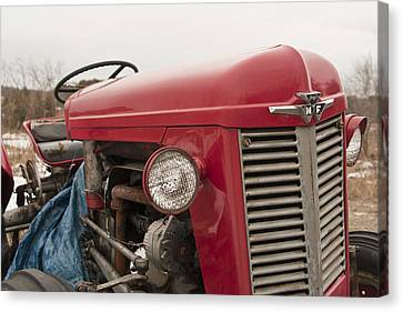 Big Red  Canvas Print by Eugene Bergeron