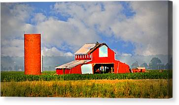 Big Red Long Canvas Print by Marty Koch