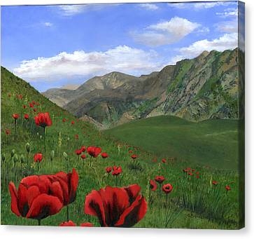 Big Red Mountain Poppies Canvas Print by Cecilia Brendel