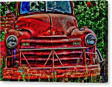 Big Red  Canvas Print by Toni Hopper