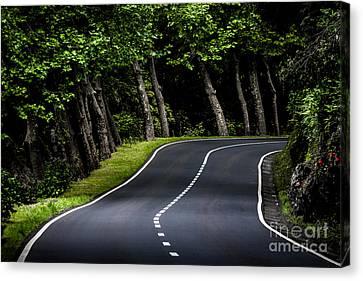 Big  Road Canvas Print