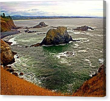 Big Rock Beach Canvas Print by Marty Koch