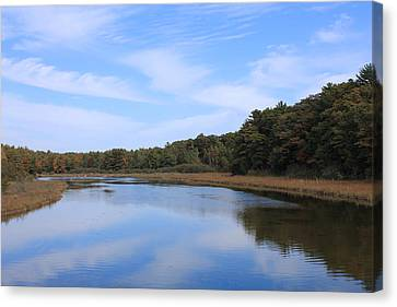 Big Sable Canvas Print by Sheryl Burns