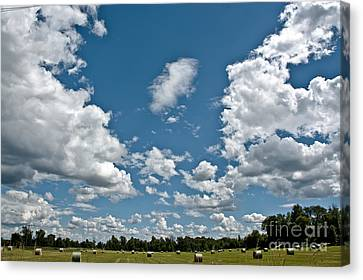 Big Sky Canvas Print by Cheryl Baxter